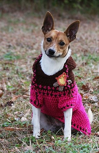 Free Crochet Dog Sweater Patterns ebook by Jenna Wingate Designs