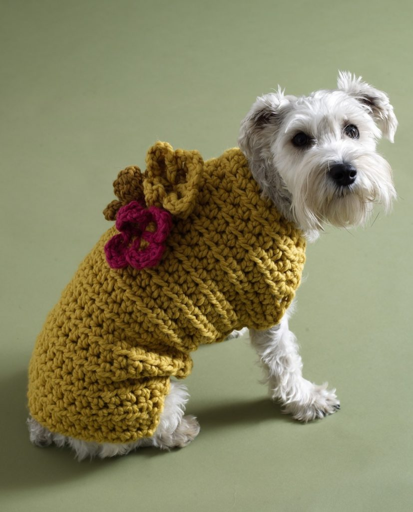 Free crochet dog sweater patterns by Lion Brand